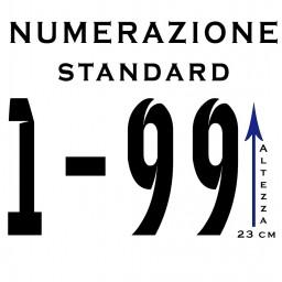 Print Number